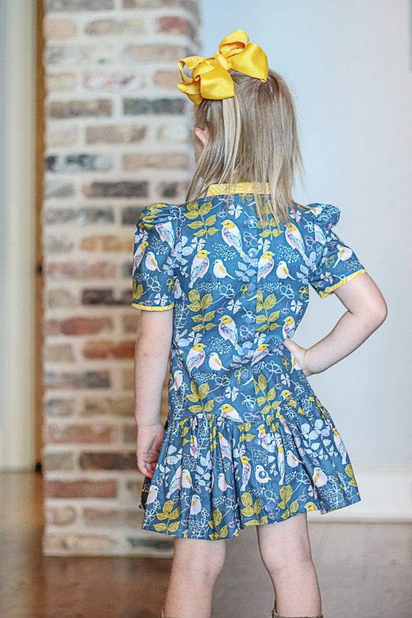 Falleyn girls dress bird print back